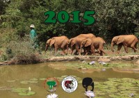 Waisen-Elefanten-Kalender 2015 jetzt bestellen !!!