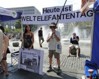 Schüsse am Münchner Stachus zum Weltelefantentag