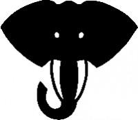 WICHTIGE AKTION für die Elefanten – bitte mitmachen!