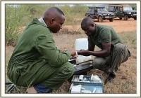 Die Rettungsaktion für einen Elefantenbullen mit einer Schlingenwunde