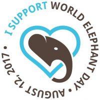Heute ist Welt-Elefanten-Tag