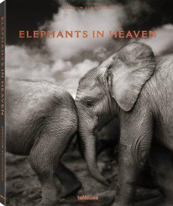 """Buch """"Elephants in Heaven"""""""