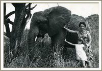 Dr. Dame Daphne Sheldrick D.B.E, 4. Juni 1934 – 12. April 2018