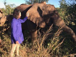 Roxy Danckwerts mit Matabele