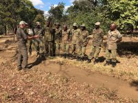 Ranger-Training in Malawi