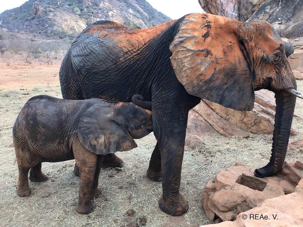 Ex-Waise Kinna und ihr Baby Kama