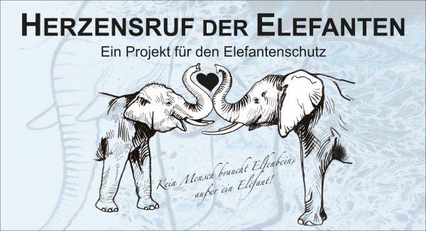 Wir haben den Elefanten eine Stimme gegeben